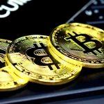 Gerald Cotten Bitcoin